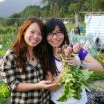 asian-woman-harvesting-beetroots