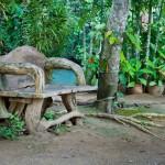 bench-and-lagoon