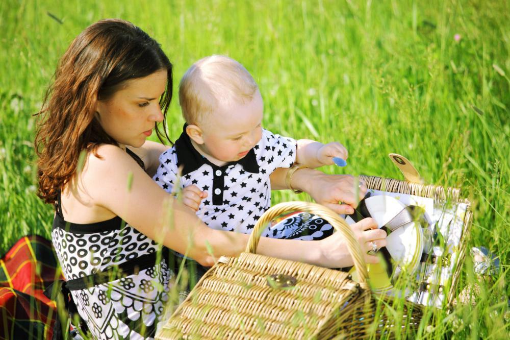 family-picnic