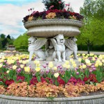 flowerbeds-in-a-formal-garden