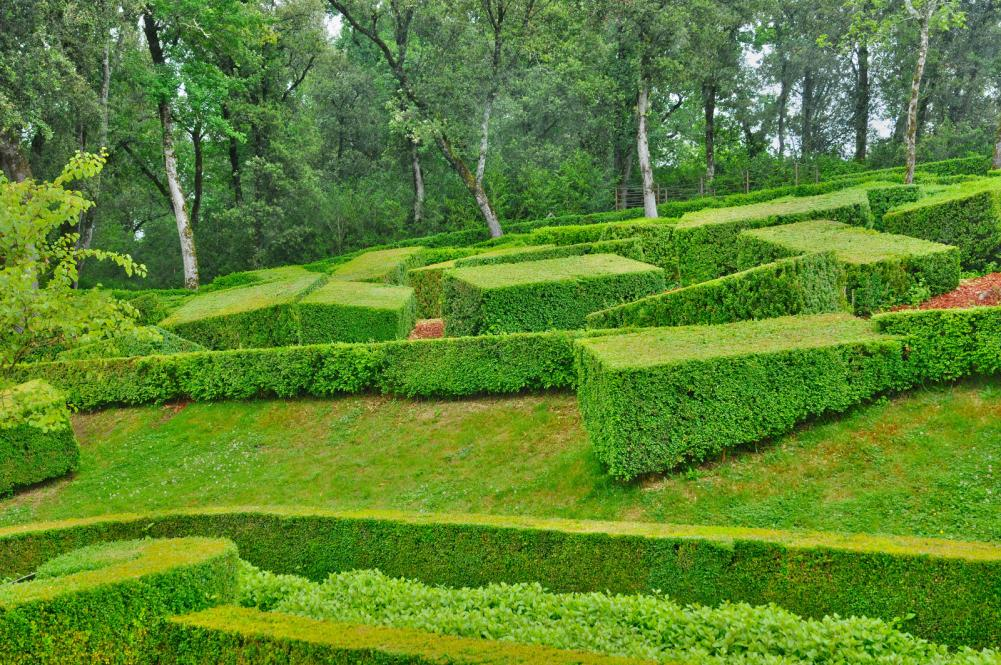 france-picturesque-garden-of-marqueyssac-in-dordogne (1)