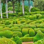 france-picturesque-garden-of-marqueyssac-in-dordogne
