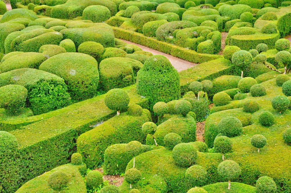 france-picturesque-garden-of-marqueyssac-in-dordogne (2)