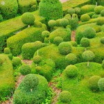 france-picturesque-garden-of-marqueyssac-in-dordogne (3)