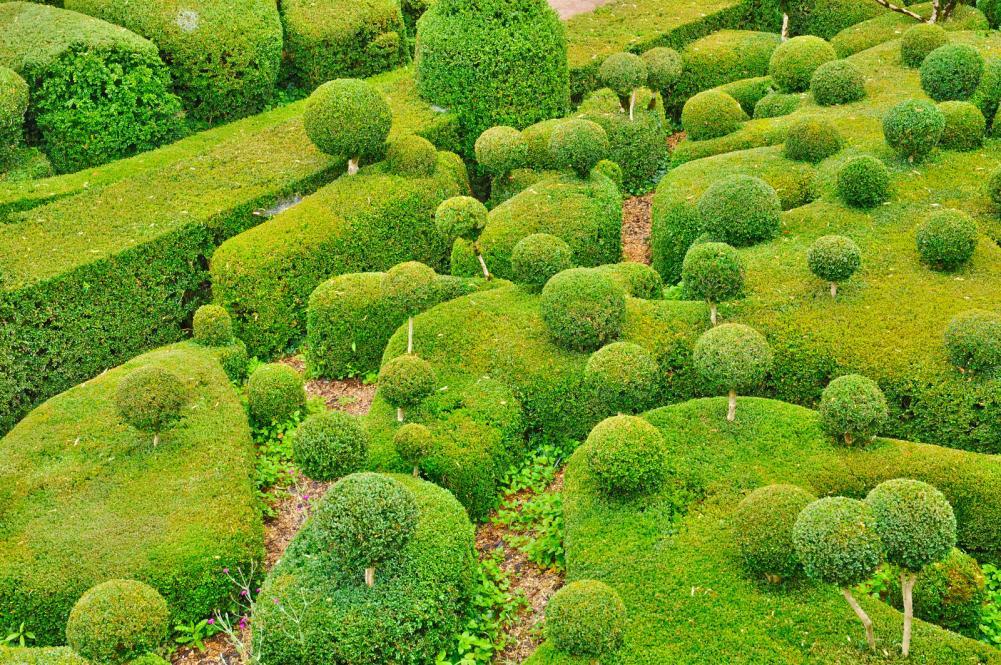 france-picturesque-garden-of-marqueyssac-in-dordogne (3)