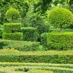 france-picturesque-jardins-du-manoir-d-eyrignac-in-dordogne