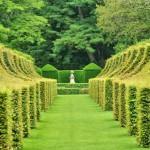 france-picturesque-jardins-du-manoir-d-eyrignac-in-dordogne (3)