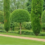 france-picturesque-jardins-du-manoir-d-eyrignac-in-dordogne (5)