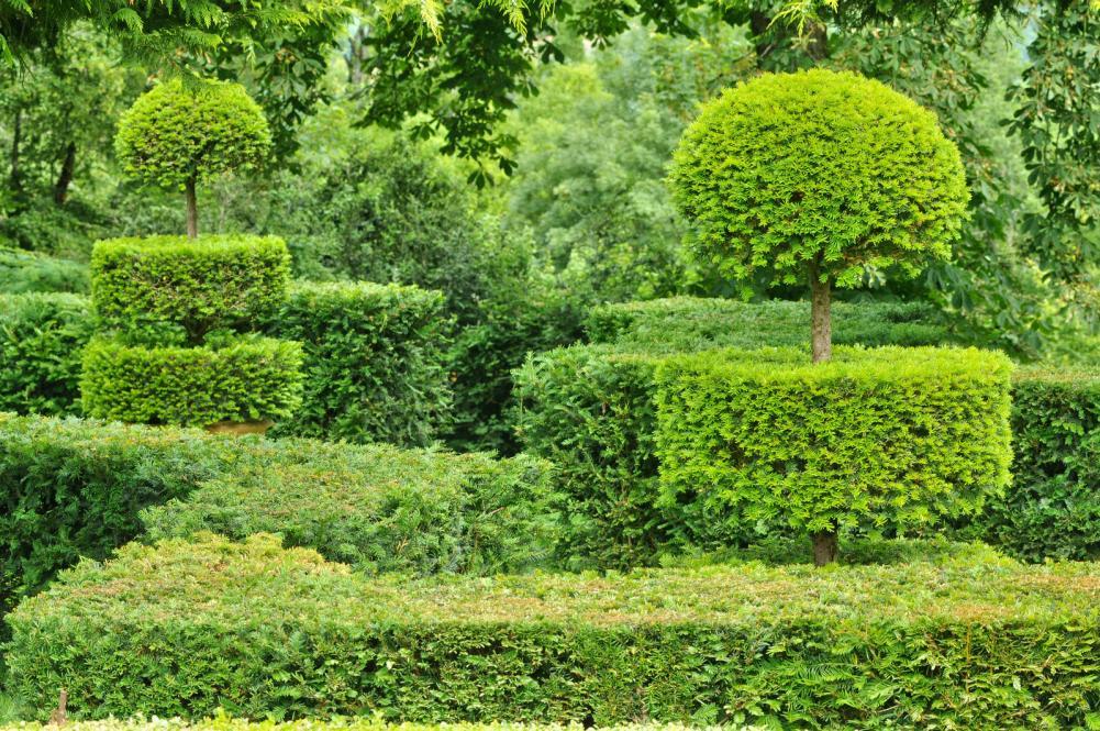 france-picturesque-jardins-du-manoir-d-eyrignac-in-dordogne (6)