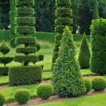 france-picturesque-jardins-du-manoir-d-eyrignac-in-dordogne (7)