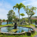 green-tropical-park-with-fountains-and-ponds