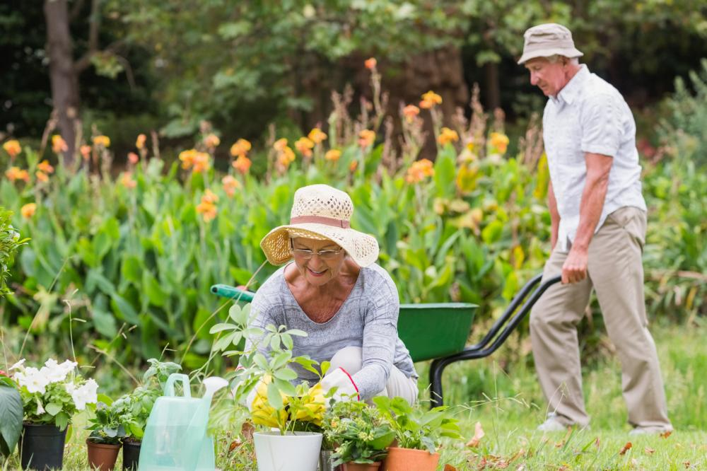happy-grandmother-and-grandfather-gardening