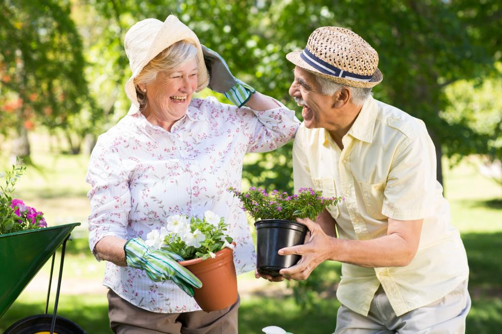 happy-senior-couple-gardening