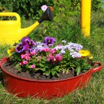 ideas-for-garden-flowers-in-old-wash-basin