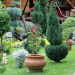 outdoor-flower-pots-for-small-garden