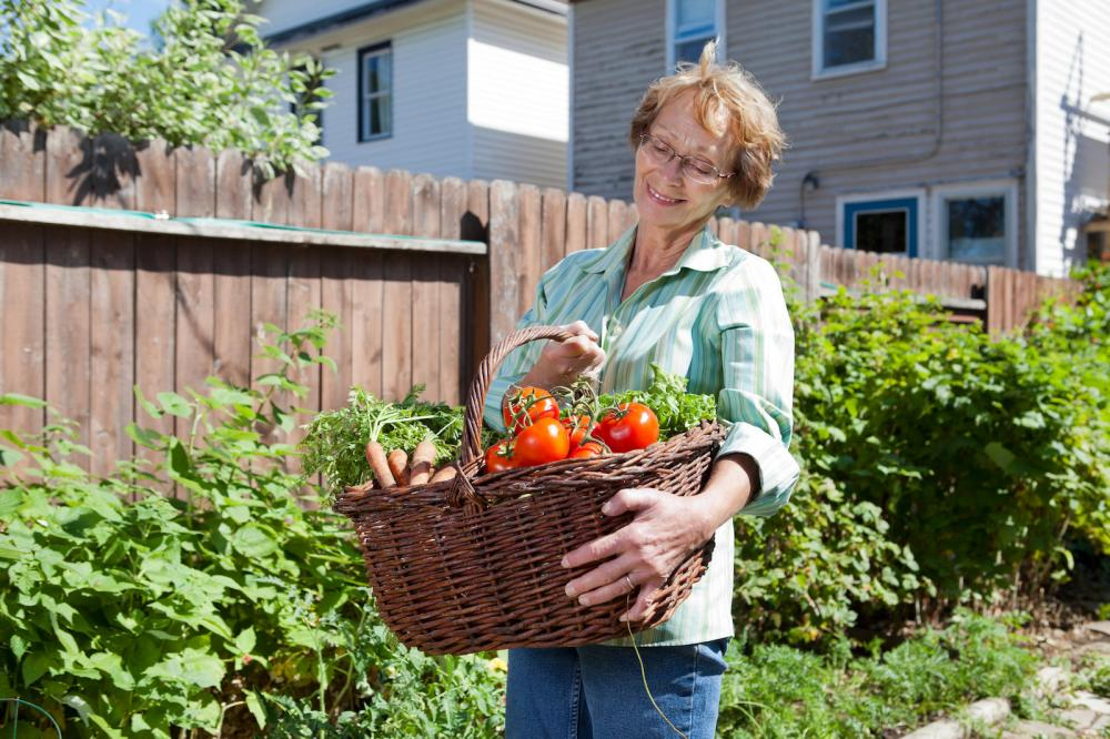 senior-woman-with-vegetables-from-garden