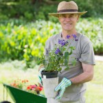 smiling-mature-man-engaged-in-gardening