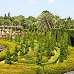 tropical-garden-in-pattaya-thailand (1)